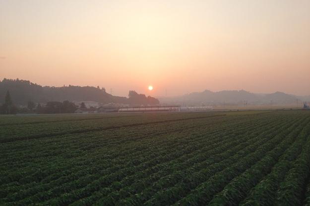 きれいな朝焼け。肉眼ではもっと大きな赤い太陽で、生命力みなぎりました。